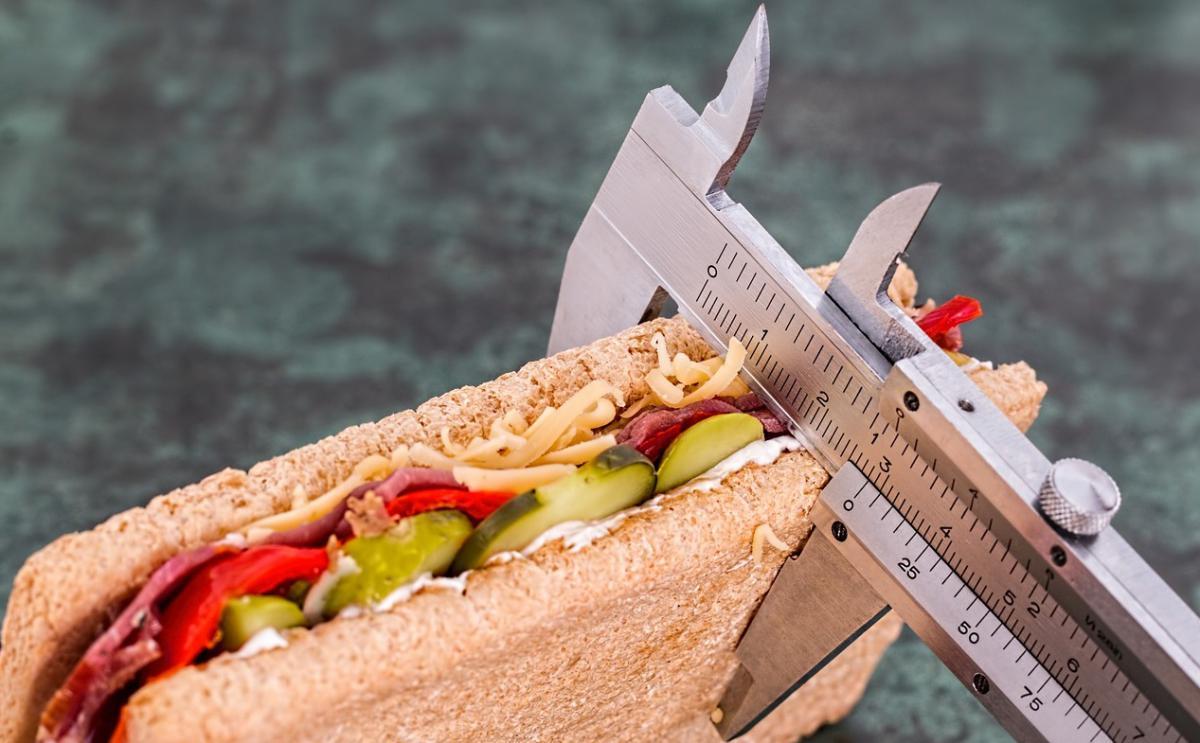 f7ec91d6531 Základy zdravého stravování